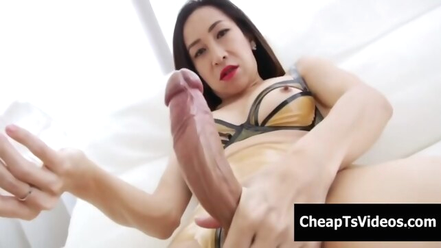 Thai Ladyboy Tanny Fucks.. amateur asian ladyboy